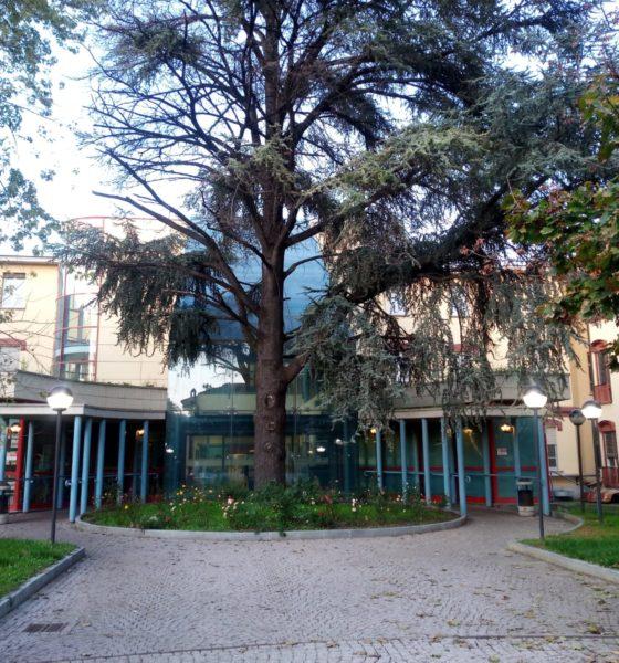 Tortona Covid-19