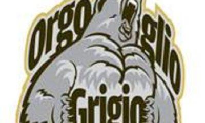 Orgoglio Grigio